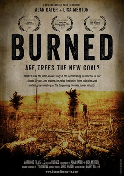 Burned - Are Trees the New Coal?